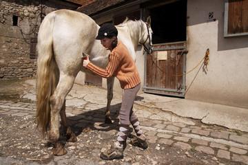 enfant pansage cheval 5