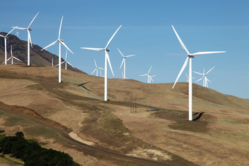 Wind energy, wind turbine in a field Washington state.