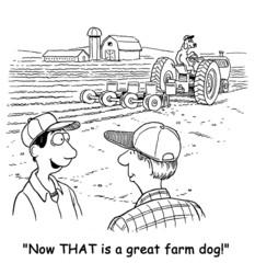Great Farm Dog