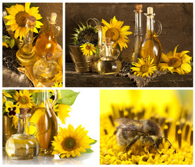 Bottle of sunflower oil with flower Collage