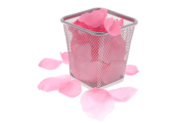rose Petals in the wastepaper basket