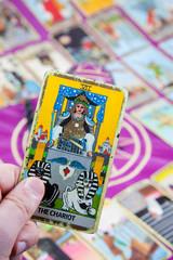The Chariot, Tarot card, Major Arcana