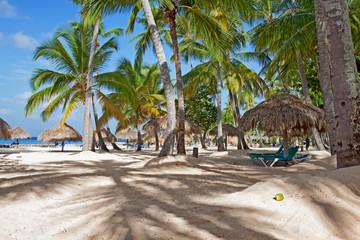 Palmenstrand in Bayahibe, Dominikanische Republik