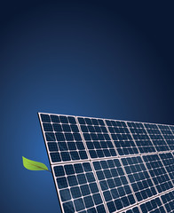 Solar Growth - invented by Nature