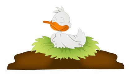 Cute Cartoon Duck