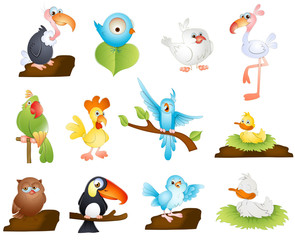 Cute Cartoon Birds