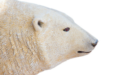 polar bear on white background