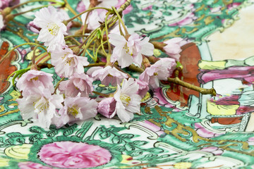 Cherry Blossoms on Asian Plate