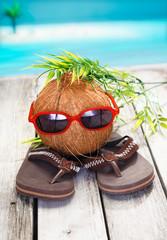 Cool coconut adventurer