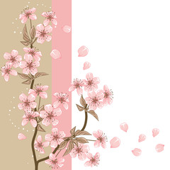Cherry Tree (Card with stylized vector blossom)