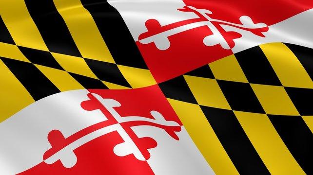 Marylander flag in the wind