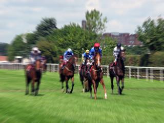 York horse race