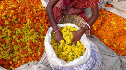 Mujer en el mercado de flores de Mullik Ghat, Calcuta, India