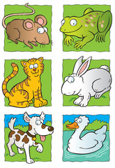 Cartoon small animals collection
