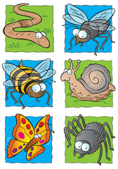 Cute cartoon insects collection