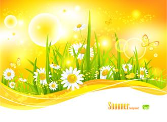 Sunny bright background
