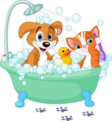 Printed kitchen splashbacks Cats Dog and Cat having a bath