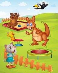 Wall Murals Bears Animal playground