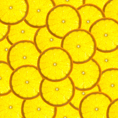 Background with citrus-fruit of orange slices / back lit