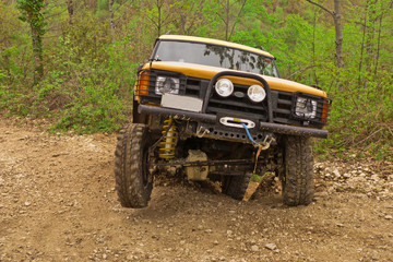 jeep giallo nel bosco