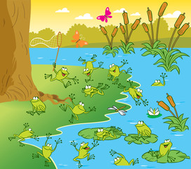Pond with the frogs
