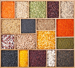 Different beans, peas, lentils and soy