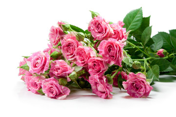 Bouquet from gentle pink color of roses