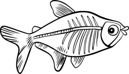 cartoon x-ray fish for coloring book