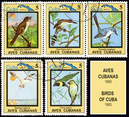 Series Cubian birds, postage stamp