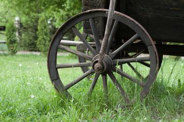 Vintage wooden wheel in green grass
