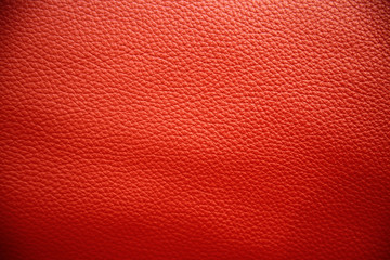 Poster de jardin Cuir Rot gefärbtes Leder