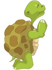 Funny Turtle. Pray.