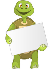 Funny Turtle. Holding Box.