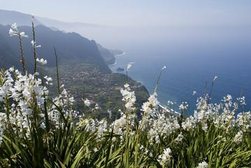 Madeira,North Coast