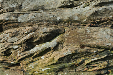A view of sedimentary rock