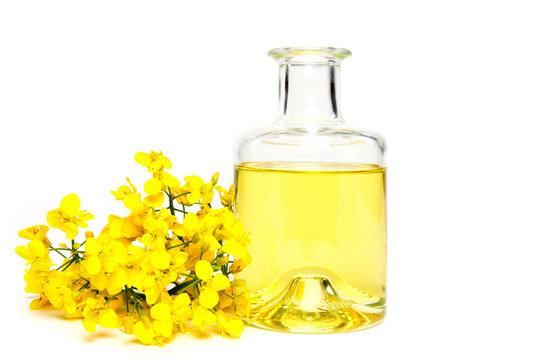 Fresh canola oil