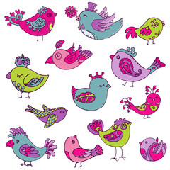 Colorful Birds Doodle Collection - hand drawn in vector