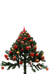 Christmas tree red top