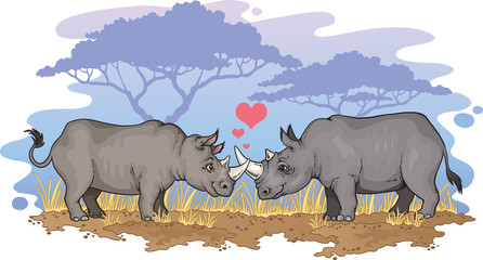 Two rhinos falling in love in the African savanna