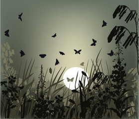 illustration with butterflies in grass at sunset