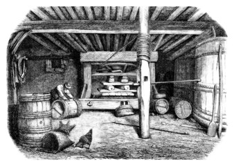 Winepress 19th century - Pressoir a Vin