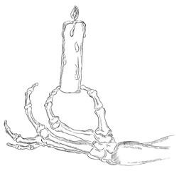 The hand skeleton