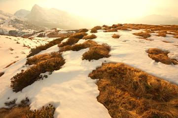 paesaggio di montagna 4236