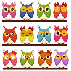 Photo sur Plexiglas Hibou Set of 12 owls with different emotions