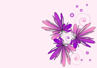 Violet flowers on a pink background
