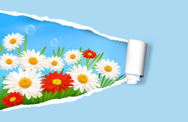 Summer background with flowers and ripped paper.