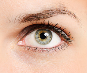 Beautiful young woman's eye