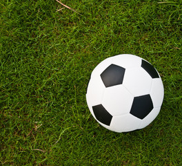 Soccer or football ball on green grass