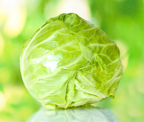 Cabbage on colorful green background