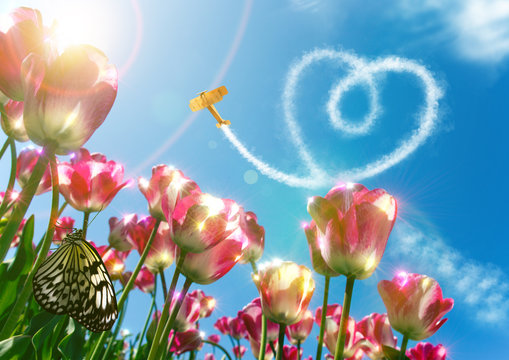 Sommer Liebe,